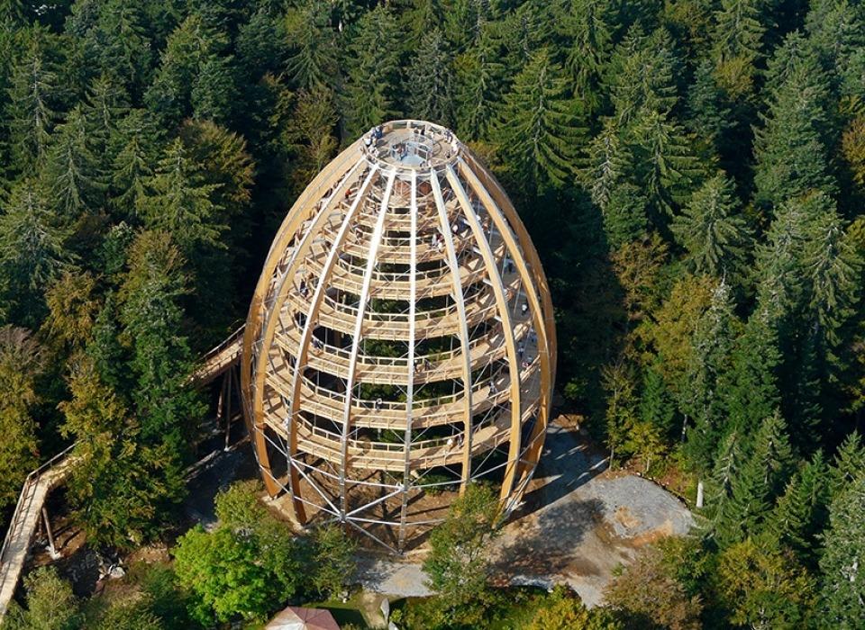 Stezka v korunách stromů - Bavorský les